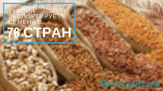 76 стран закупают семена у Турции